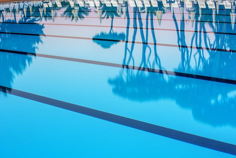 Olympisch zwembad Park Albatros
