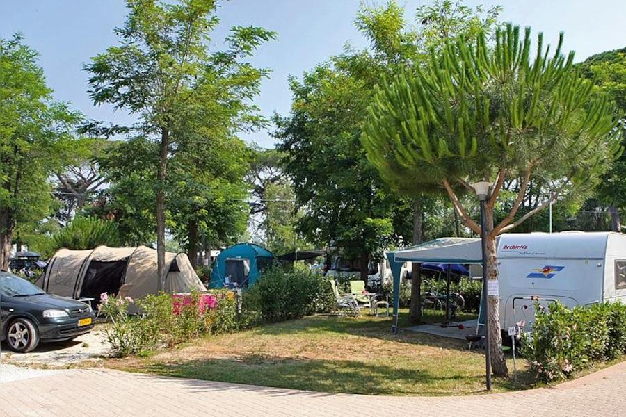 Staanplaats op camping Park Albatros